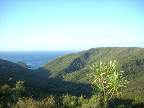 Cape Reinga (Neuseeland_DSCI0232.JPG) wird geladen. Work and Travel Australia..