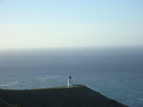 Cape Reinga (Neuseeland_DSCI0259.JPG) wird geladen. Work and Travel Australia..