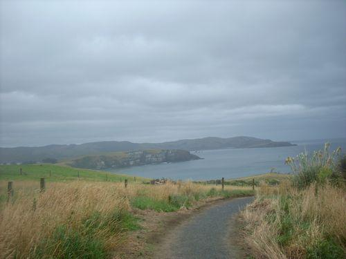 Catlins Coast (Neuseeland_DSCI0229.JPG) wird geladen. Work and Travel Australia..