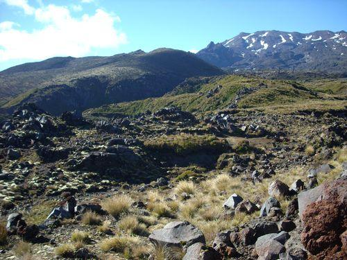 Tongariro National Park (Neuseeland_DSCI0101.JPG) wird geladen. Work and Travel Australia..